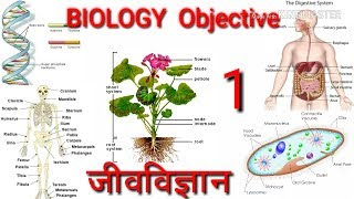 Railway group d science biology objective question in hindi| railway group d exam question