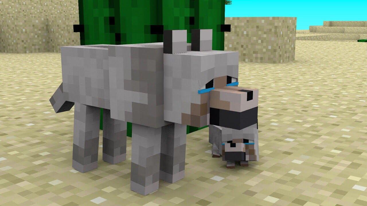 Wolf Life 2 - Minecraft Animation - YouTube