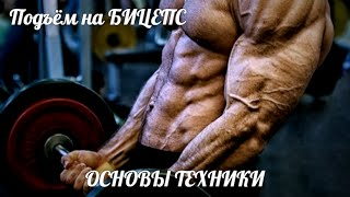 ПОДЪЁМ ШТАНГИ на БИЦЕПС - ОСНОВЫ ТЕХНИКИ от HeavyMetalGYM