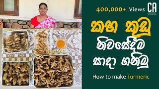 කහ නවරදව තමබ පරබජනය සදහ සකස කර ගනම  How to make Turmeric