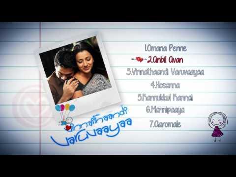 Vinnaithaandi Varuvaayaa - Music Box | A.R. Rahman | STR ,Trisha | Gautham Menon