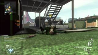 "Black Ops 2 Glitch ""Everything is Green"