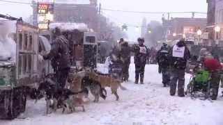 U.P.  200 & Midnight Run | Sled Dog Racing