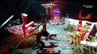 The Elder Scrolls Online: Summerset | PC Gameplay | 1080p HD | Max Settings