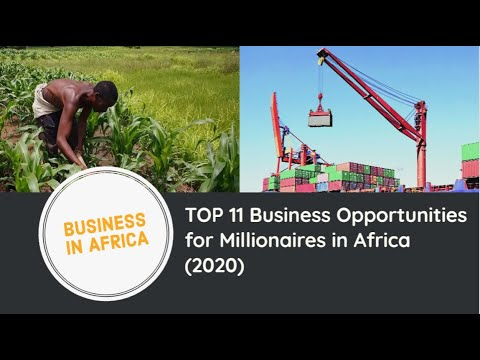TOP 11 Business Opportunities for Millionaires in Africa (2020), Business Opportunities in Africa