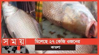 ৪০ হাজার টাকা....! | Fish Bazar | Business News
