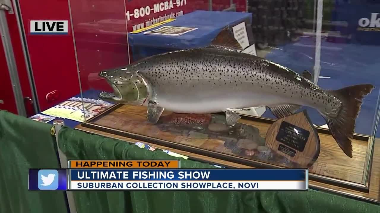 Ultimate fishing show in novi youtube for Novi fishing show