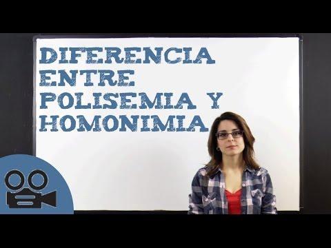 diferencia entre polisemia y homon mia youtube
