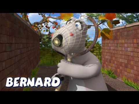 Bernard Bear | In The Net AND MORE | Cartoons for Children