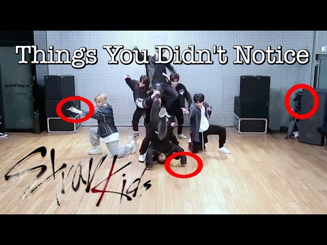 Things You Didn't Notice About Stray Kids