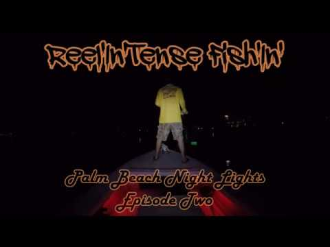 Reel'In'Tense Fish'In' - Palm Beach Night Lights - Episode 2 - Fly Fishing for Snook