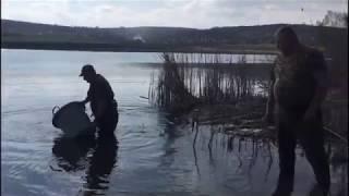 AVPS Potaissa Turda a populat lacurile Tureni 1 și 2 (aprilie 2019)