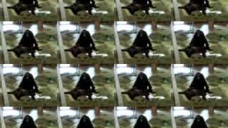 Zoo Sex ft. R Kelly HD