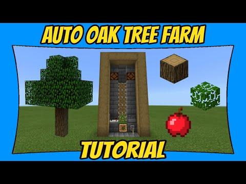 How To Build An Automatic Oak Tree Farm [Minecraft Bedrock Edition]