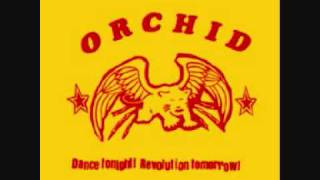Watch Orchid Lights Out video