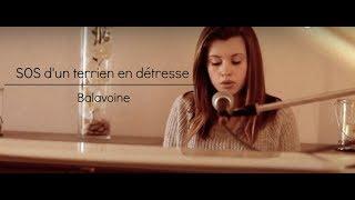 SOS d&#39un terrien en detresse - Balavoine (cover)