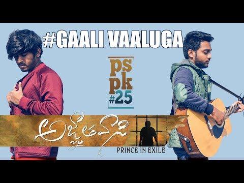 Gaali Vaaluga - A Tribute To #PSPK | cover | Anirudh | Agnyaathavaasi