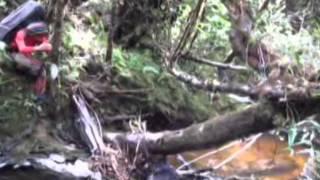 Ekspedisi Gunung Leuser Lustrum Mapala Satubumi UGM