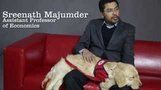 Service Dog Training At Manchester University
