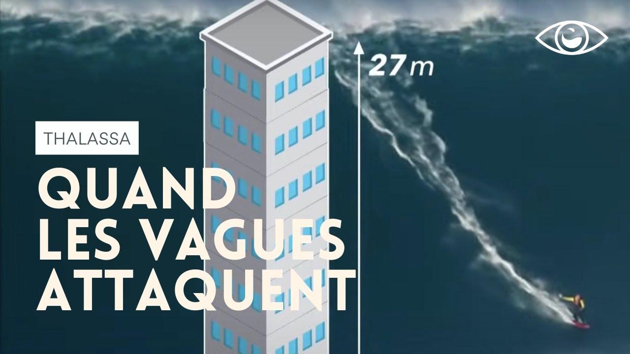 Quand les vagues attaquent - Nazaré Thalassa (reportage complet)