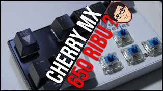 mx cherry tester