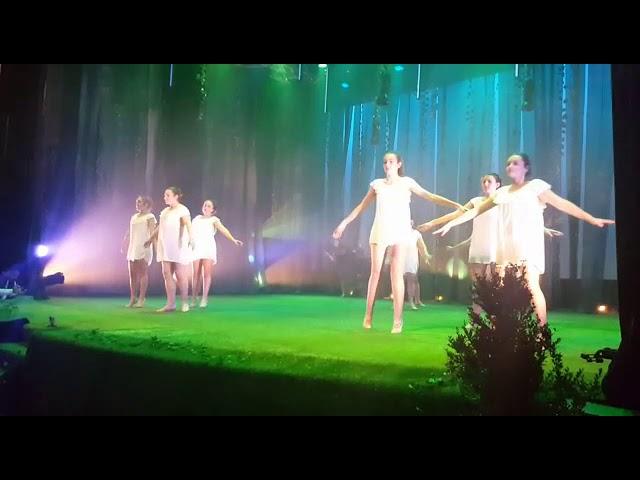 Danza e teatro nunha gala benéfica pola biopsia líquina nas Pontes