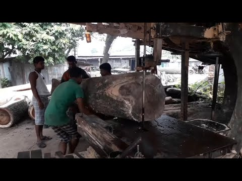full-day-with-wood-cutting-in-rural-sawmill।whole-day-work-with-wood-workers।daily-work-of-wood-cut