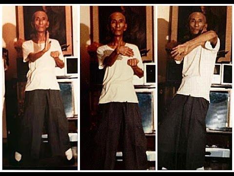YIPMAN Wing Chun