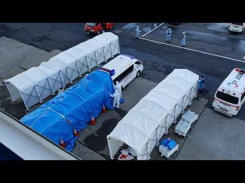 Эвакуированных пассажиров с карантинного лайнера Diamond Princess поселят в спецквартиры