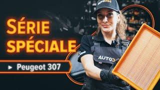Manuel du propriétaire Peugeot 307 SW en ligne