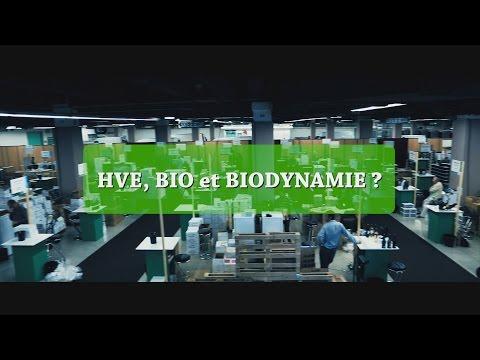 Qu'est-ce qu'un vin biologique, en biodynamie ou en H.V.E ?