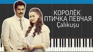 Королёк - птичка певчая/Çalıkuşu/Piano cover