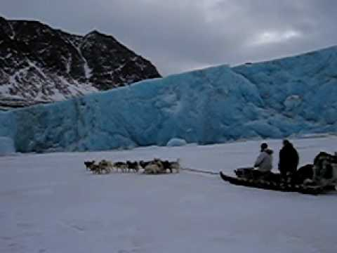 Greenland Dogsledding.avi