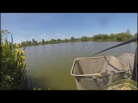 The Sedges Fishery- Brick Lake