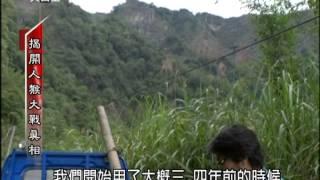 2014.07.05【民視異言堂】揭開人猴大戰真相