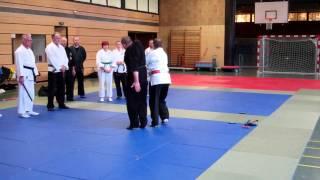 Bewegungslehre HK-Ryu Stil