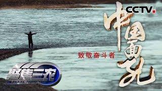 《中国面孔》 20190727 张尕怂的乡愁  CCTV农业