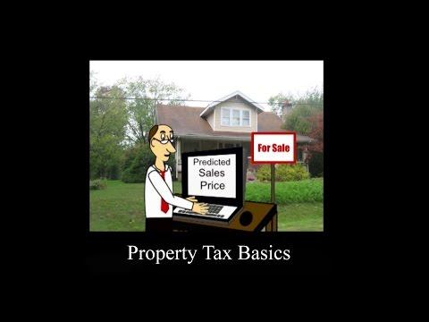 Property Tax Basics