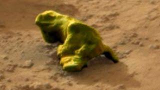 "UFO Sightings Nasa Captures ""Martian Lizard"" On Curiosity Photo? Nov 12 2103"