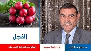 Dr Faid   Radish   الفجل   الخضر  المكونات الغذائية الأحد عشر  