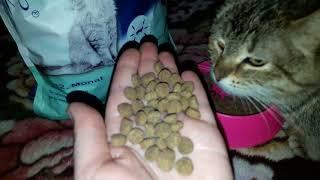 Отзыв о корме для стерилизованных кошек Sanabelle Sterilized