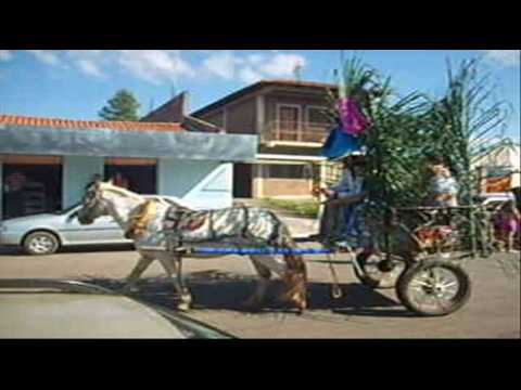 III cavalgada de Moiporá  II