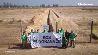 Doñana nos necesita más que nunca