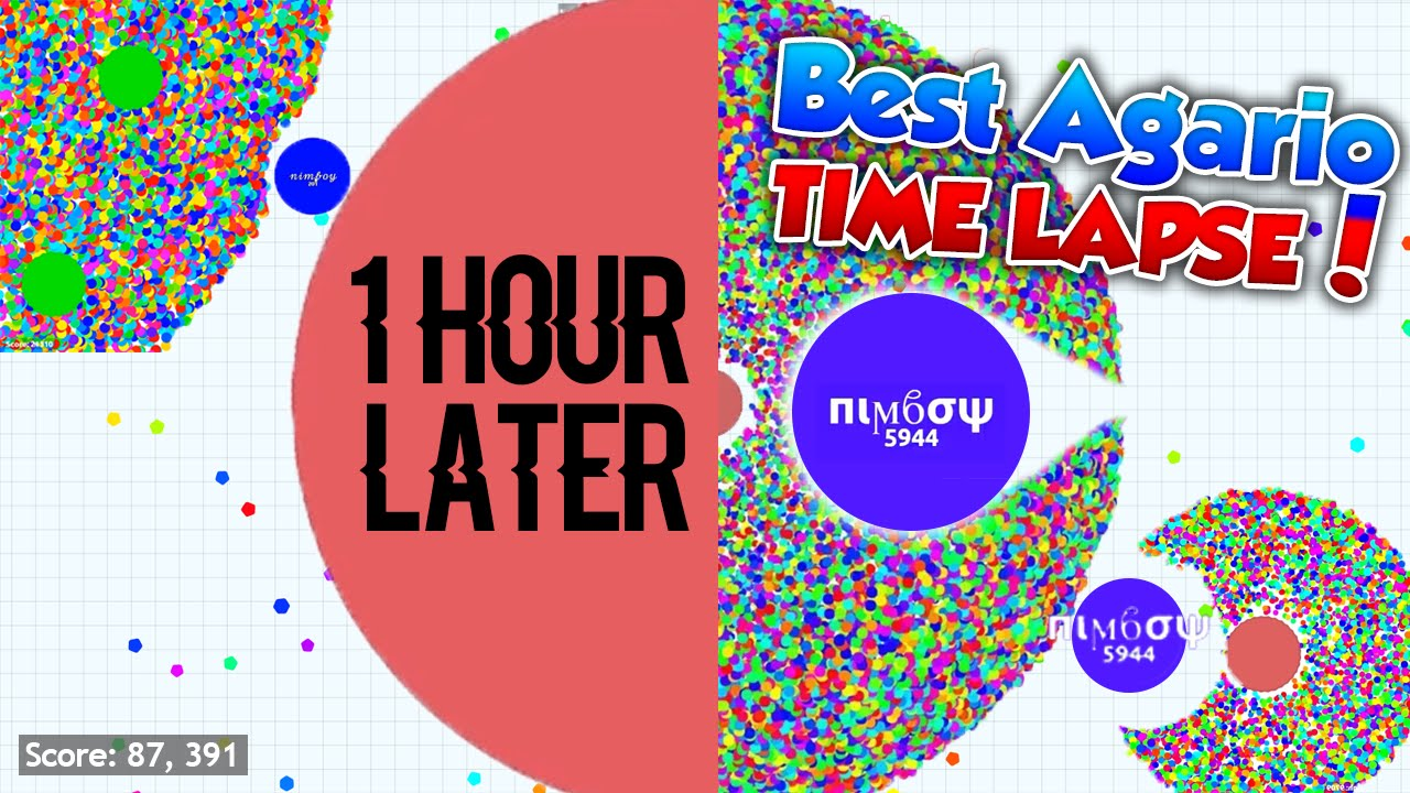 best agario time lapse you have ever seen biggest mother cell in
