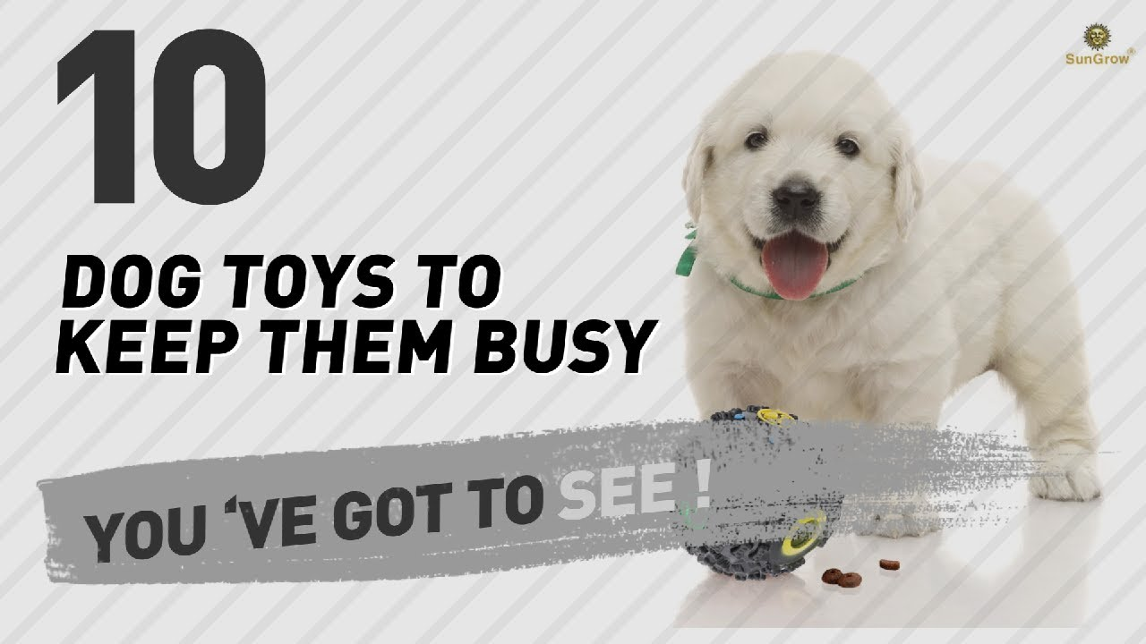 Dog Toys To Keep Them Busy // Pets Lovers Most Popular - YouTube | Dog Toys To Keep Them Busy
