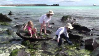 Galapagos Islands: Discovering the islands that changed the world.