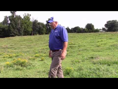 Dr. JD Green, Weed Control in Pastures
