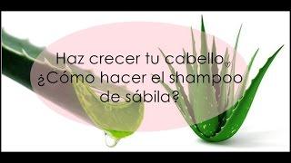 Haz crecer tu cabello. ¿Cómo hacer el shampoo de sábila (áloe vera)?