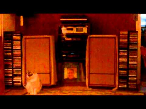Perry Como - Begin The Beguine
