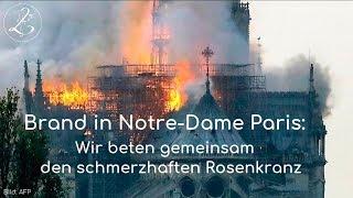 Brand in Notre-Dame Paris: Wir beten gemeinsam den Rosenkranz